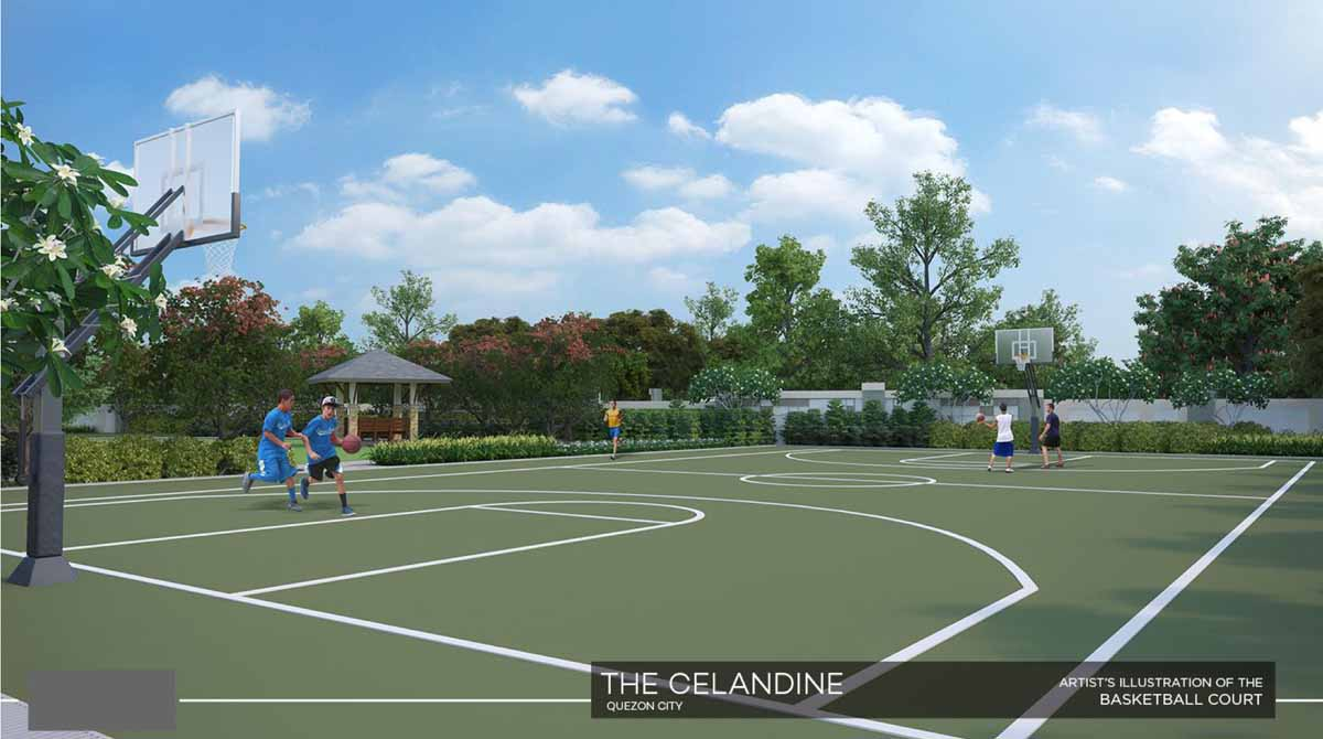 The Celandine Basketball Court